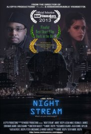 Night Stream (2013)